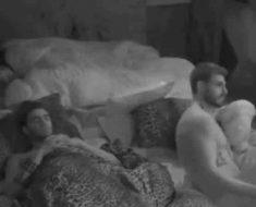 Francesco Monte e Stefano Sala a letto insieme al Grande Fratello Vip
